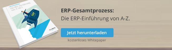 ERP-Gesamtprozess