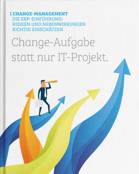 applus-erp.de - DE - Whitepaper - ERP Change Management