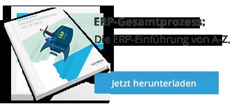 Whitepaper ERP-Gesamtprozess