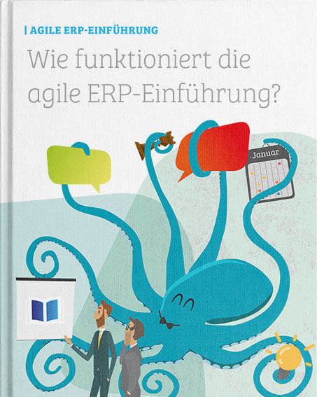 applus-erp.de - DE - Whitepaper - Agile ERP Launch