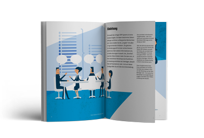 ERP Whitepaper: Anbieterauswahl